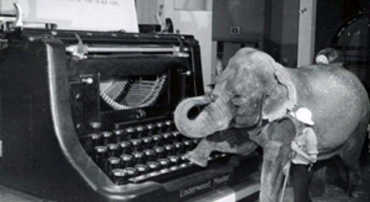 image of elephant and typewriter